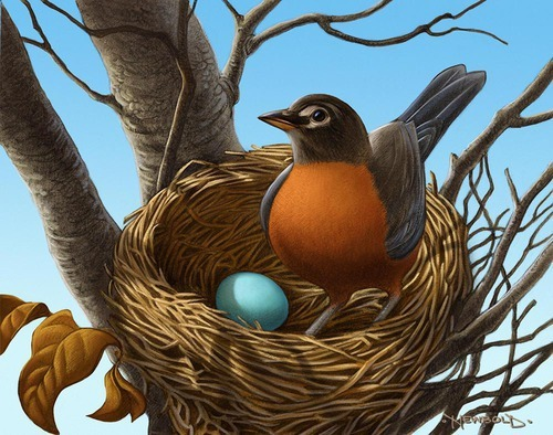 Greg Newbold - Egg Book